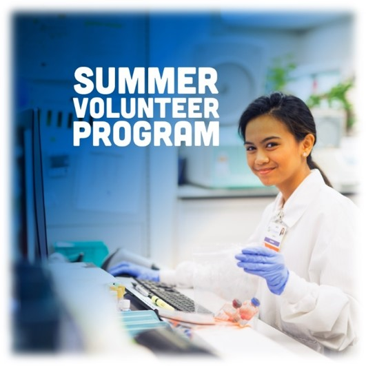 Summer Volunteer Program
